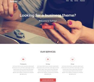 Best Free Responsive WordPress Themes - Denoizzed